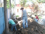 chopping away at the roots of the trees